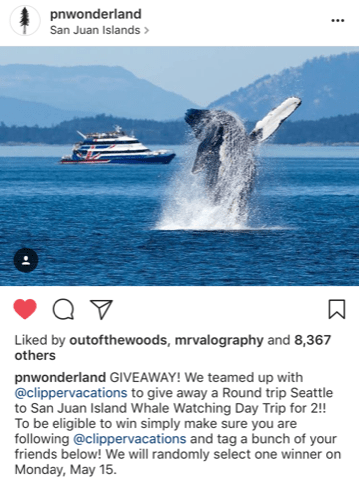 PNWonderland_Instagram